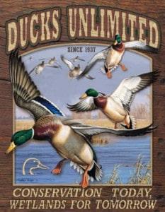ducks-unlimited-conservation-wetlands