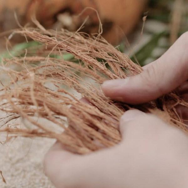 bark fibers