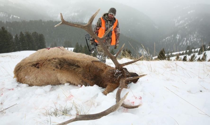 ELK hunting skill