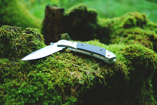A knife on a rock in woods