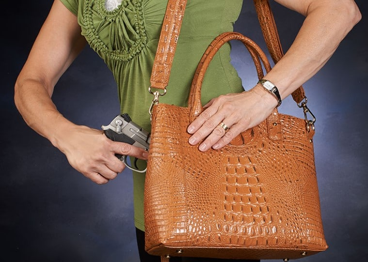 Purse&bag holsters