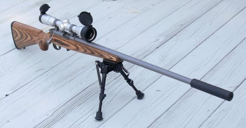 22 long rifle varmint