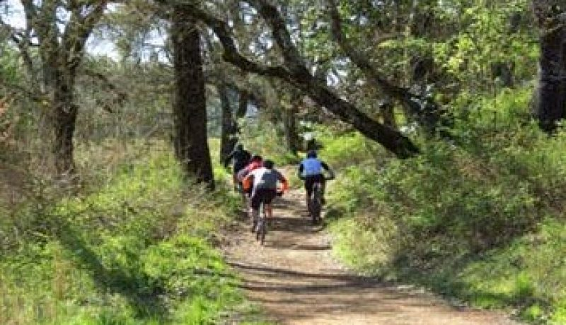 Hiking and Biking Trails: Tips for Beginners