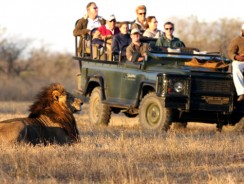 How to Pack for an East African Safari
