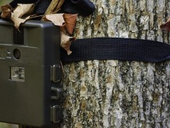 Get the most out of your hunting equipment: Trail cameras for home security?